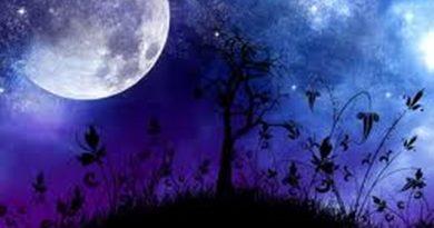 Blagodati-Mjeseca