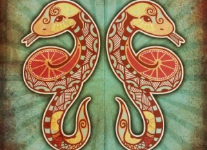 godina zmije