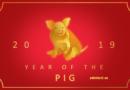 Kineski horoskop zemljane svinje za 2019