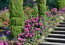Feng Shui – Kako napraviti čarobni vrt